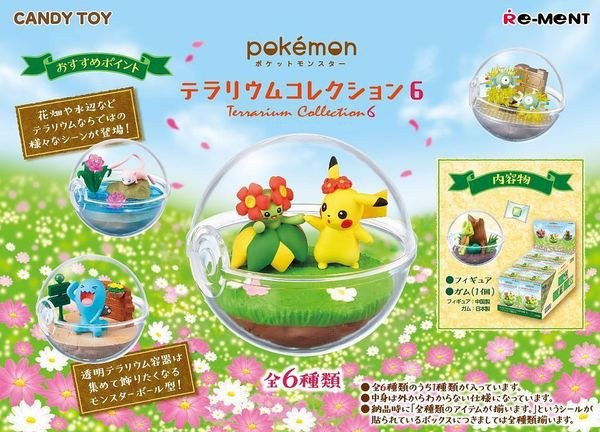 shop pokemon bán Pokemon Terrarium Collection 6