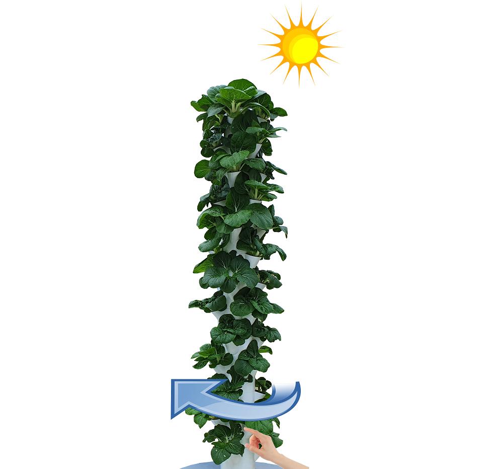 chậu trồng cây thủy canh - khí canh trụ đứng - xoay trụ
