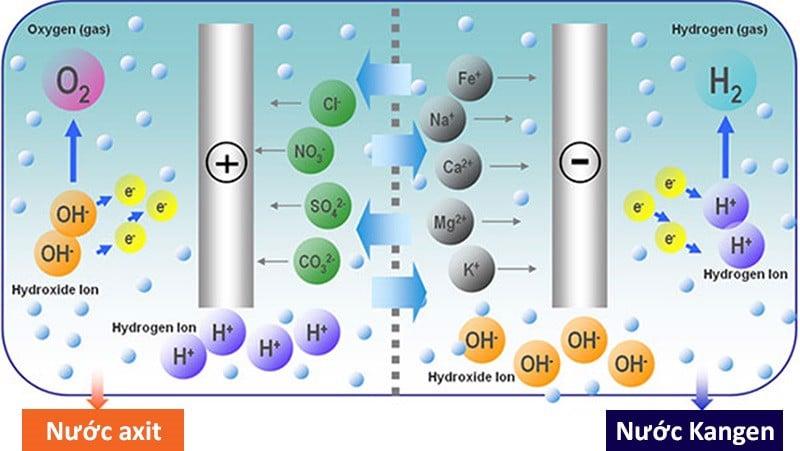 Máy lọc nước Kangen JRIV hoạt động dựa vào nguyên lý điện phân chia tách nước thành 2 nhóm nước