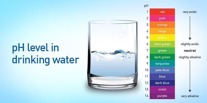 Nước ion kiềm có pH 8.5-9.5 là điều kiện hấp thụ tốt nhất cho cơ thể