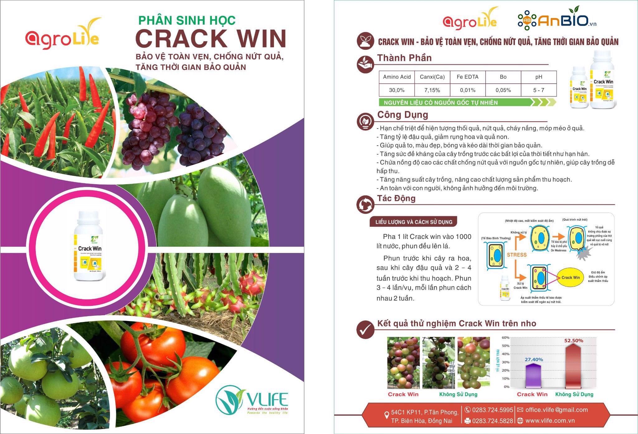 Crack Win