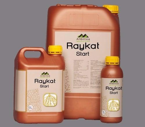 Raykat Start Anbio.vn