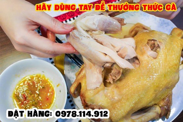 ship_do_an_ha_noi_mota_ga khong loi thoat 04
