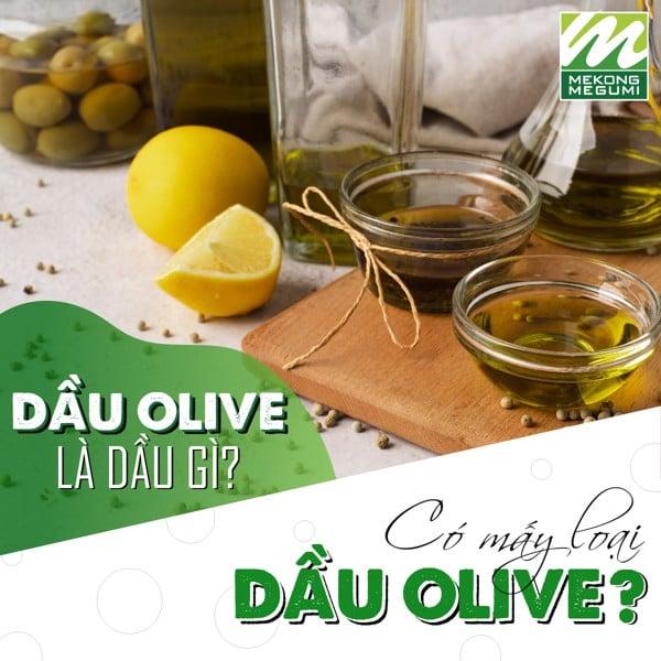 Dầu olive là dầu gì? Có mấy loại dầu oilve phổ biến hiện nay?