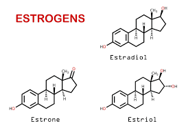 Tăng lượng estrogen trong cơ thể nam giới không có bất cứ ảnh hưởng tốt nào