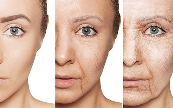 mối quan hệ giữa mỹ phẩm và chế độ dinh dưỡng để có làn da đẹp 4