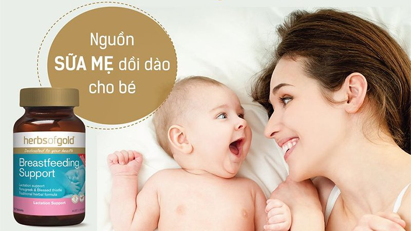 [REVIEW] Lợi sữa Herbs of Gold Breastfeeding Support có tốt không?