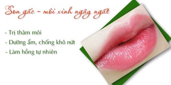 son gấc dưỡng môi, giúp môi hồng hào mềm mịn