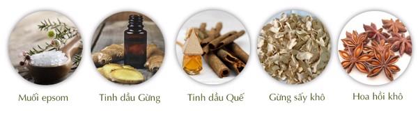 thành phần muối epsom ướp quế gừng, thành phần thiên nhiên có trong muối epsom ướp quế gừng