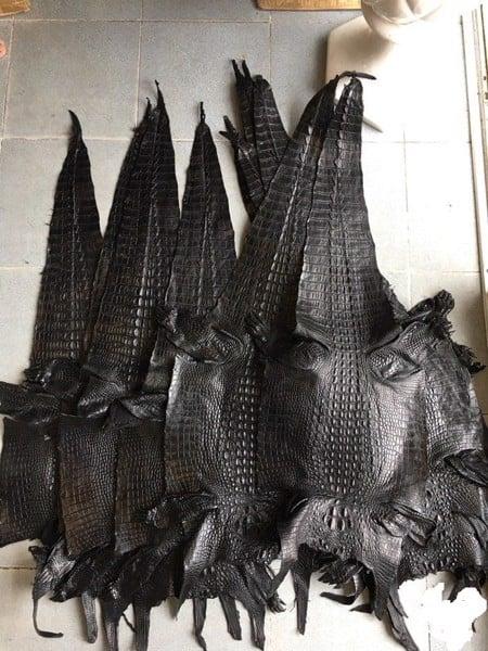 da cá sấu nguyên con bao nhiêu tiền một tấm 2