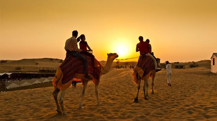 Ngắm hoàng hôn trên sa mạc