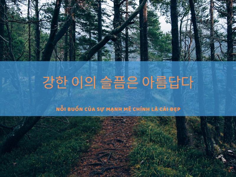 Những câu tiếng Hàn hay
