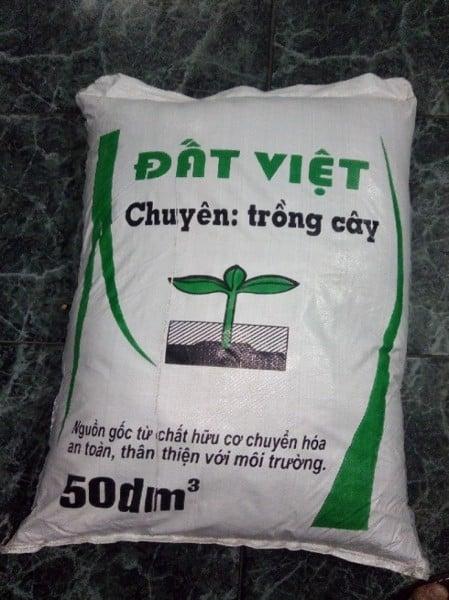 top-4-loai-dat-trong-rau-tai-nha-khong-the-bo-qua