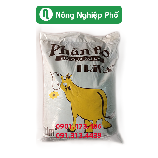 Phan-bo-tribat-da-qua-xu-ly