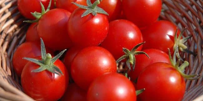 Cà chua bi là loại thực phẩm tốt cho sức khỏe.
