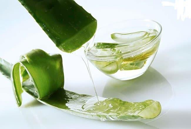 Nha Đam chứa nhiều thành phần dưỡng chất tốt cho da.