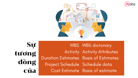 Sự tương đồng của WBS - WBS dictionary, Activity - Activity attributes, Duration estimates - Basis of estimates, Project schedule - Schedule data, Cost estimates - Basis of estimates