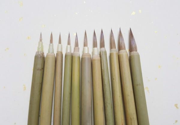 Bộ 11 chiếc bút lông hãng con cọp