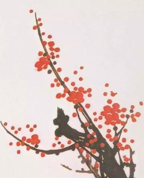 Cách vẽ hoa mai một cốt