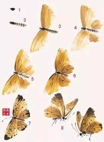 Hướng dẫn vẽ bướm