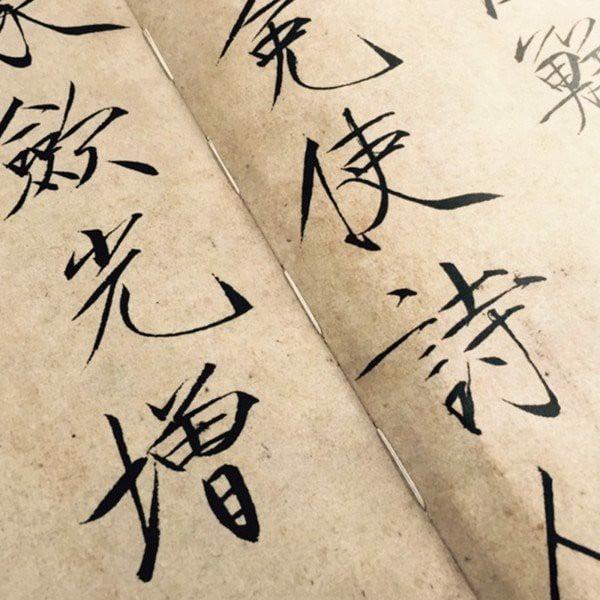 Sấu Kim Thể - Tống Huy Tông Mặc Tích