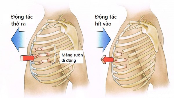 mang-suon-di-dong-wellbeing