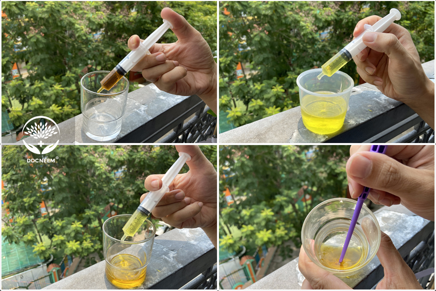 Pha trộn dầu neem và nước rửa chén vào với nhau