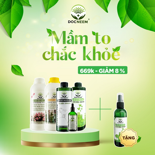 combo-mam-to-chac-khoe-docneem