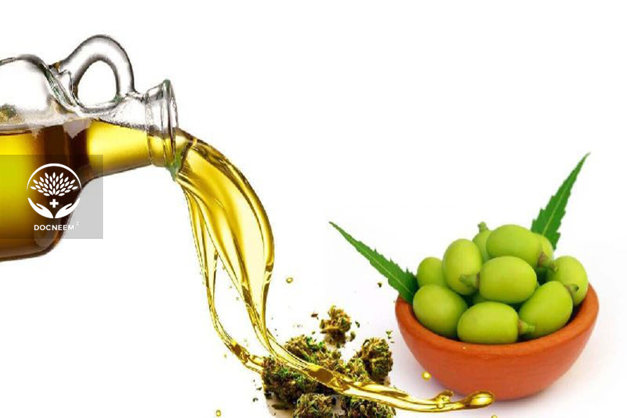 Phương pháp trị bọ trĩ với dầu Neem thương hiệu Docneem