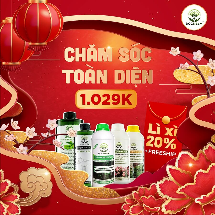 combo-cham-soc-toand-dien-docneem