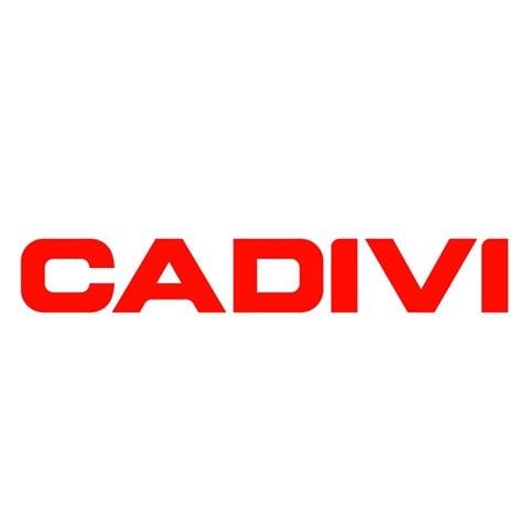 Bảng giá Cadivi 2021, catalogue và bảng giá dây điện Cadivi mới nhất