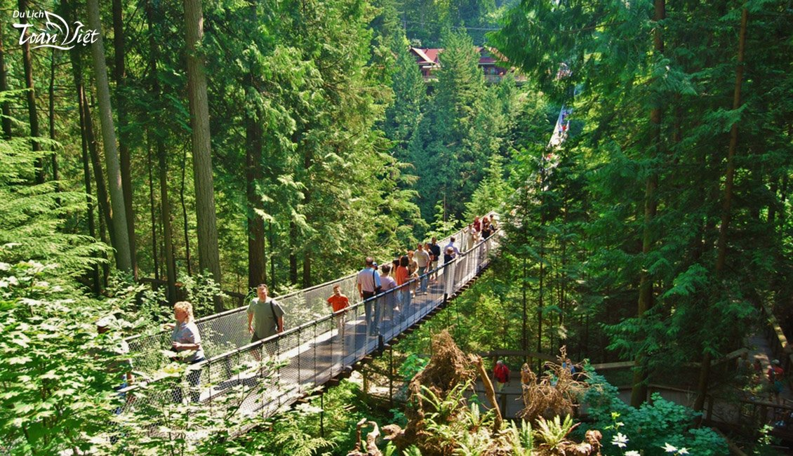Tour du lịch Canada Capilano Suspension Bridge