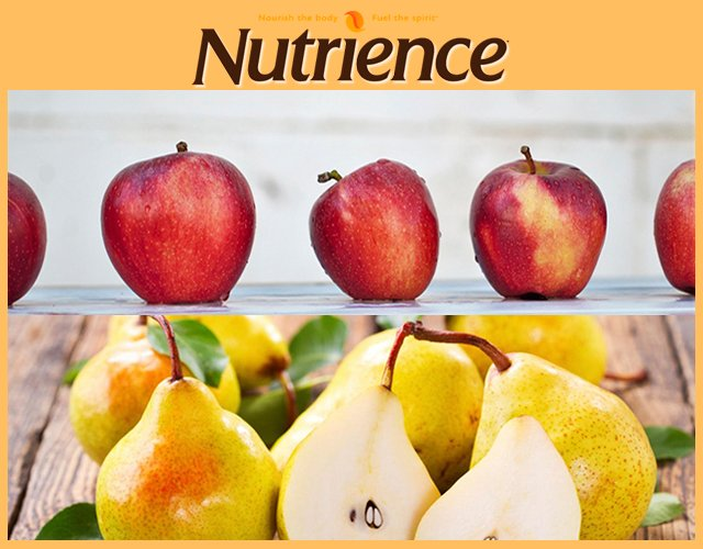 Nutrience apple and pear