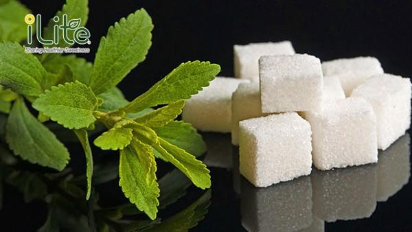 Đường ăn kiêng cỏ ngọt không có tác dụng giảm cân như lầm tưởng