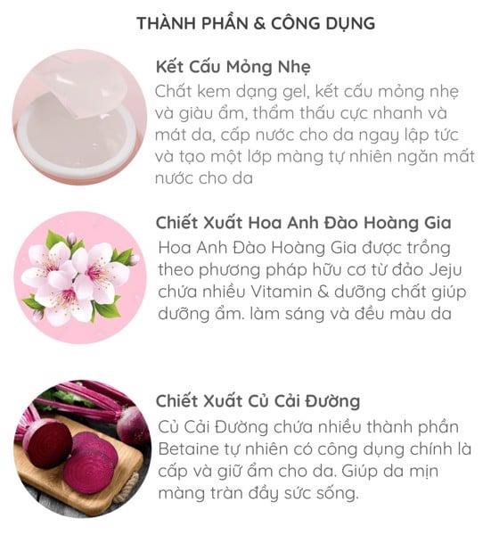 Thành phần và công dụng của bộ sản phẩmInnisfree Jeju Cherry Blossom Cream