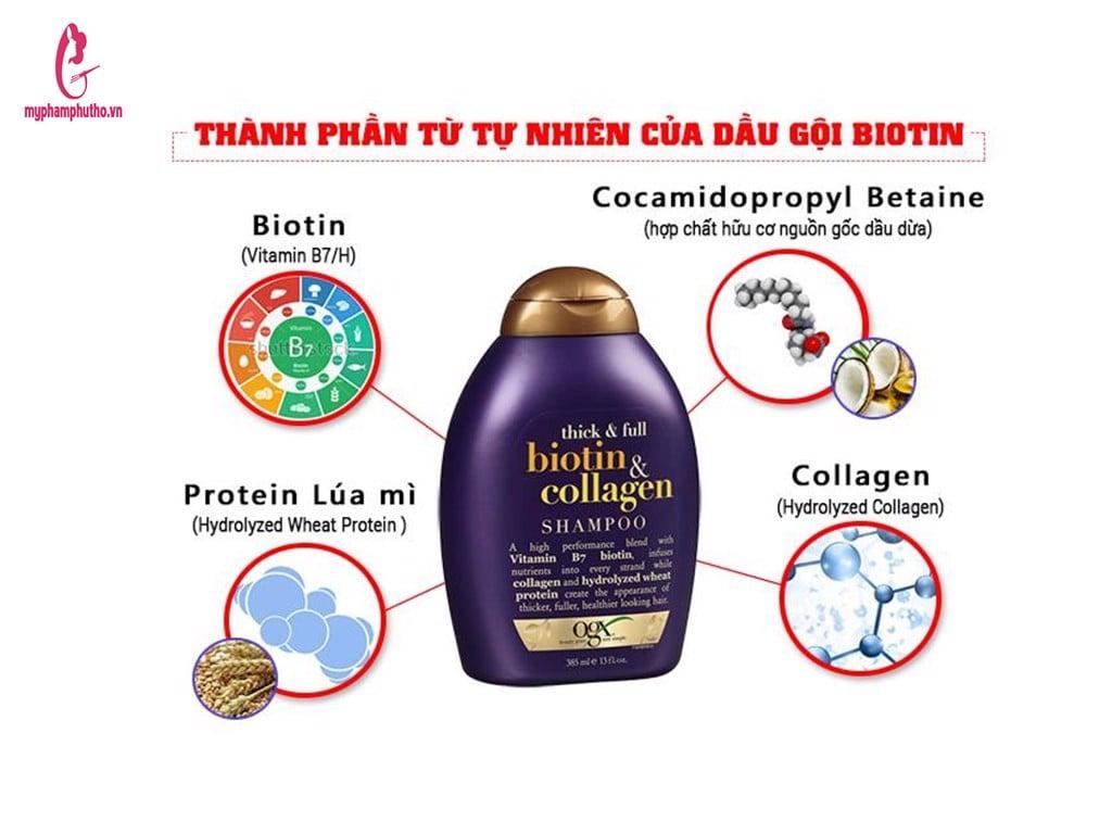 thành phần Cặp Dầu Gội Xả Biotin And Collagen USA