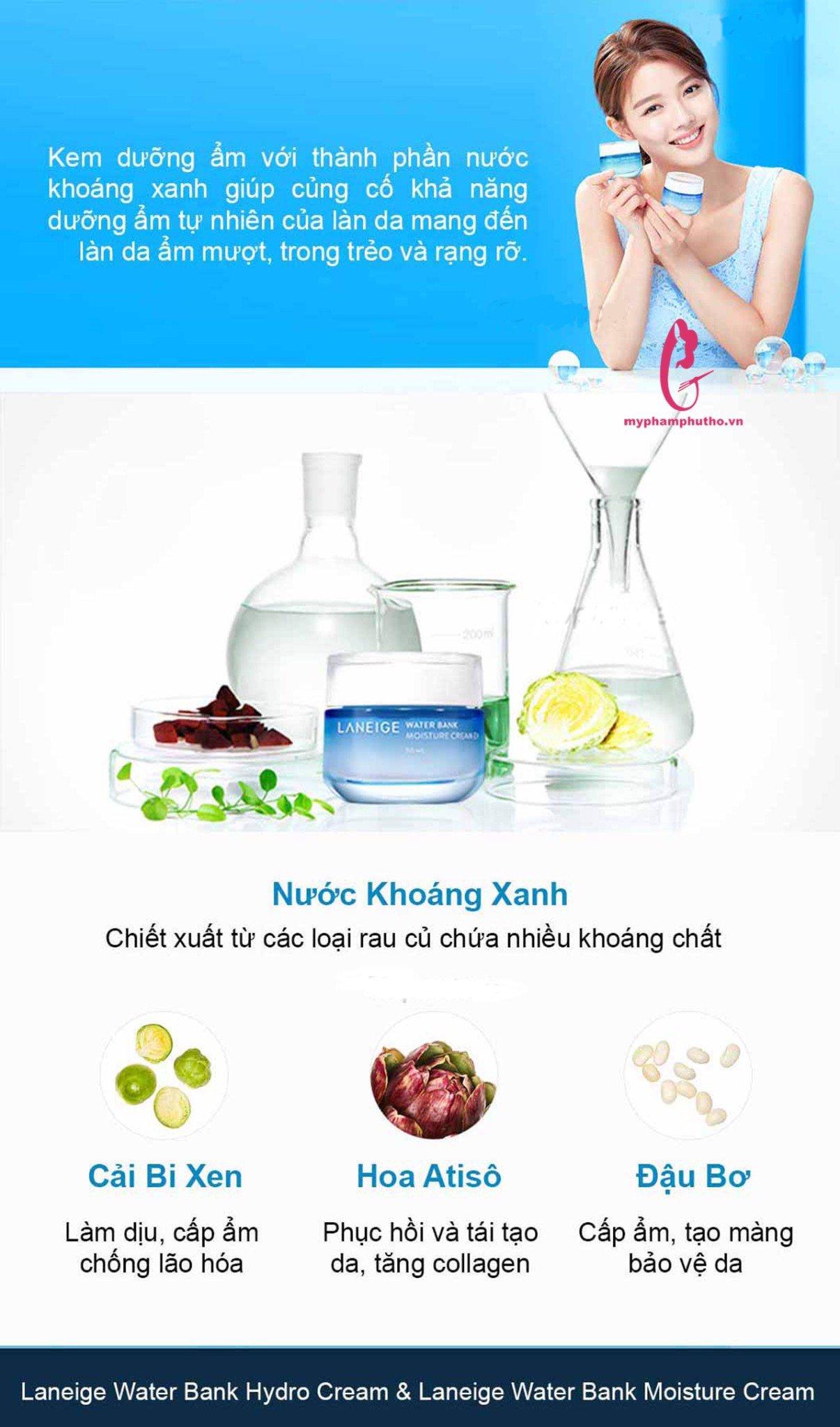 Thành phần nổi bật của kem dưỡng ẩm Laneige Water Bank Moisture Cream EX