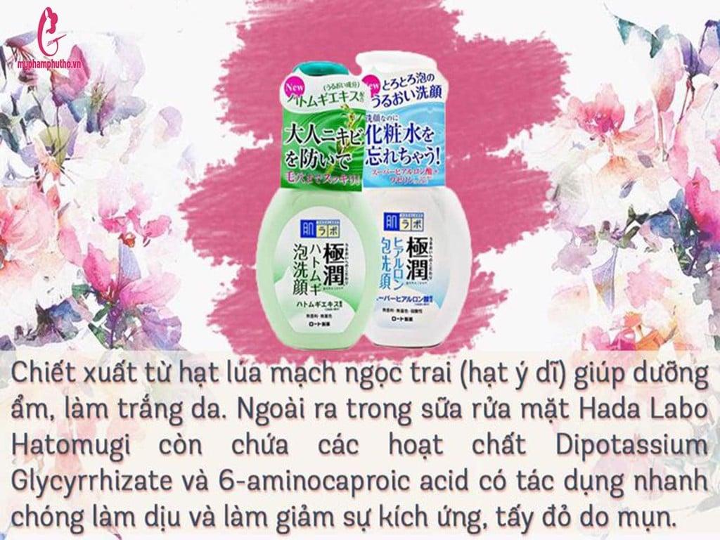 thành phần Sữa rửa mặt bọt Hada Labo Gokujyun Nhật Bản