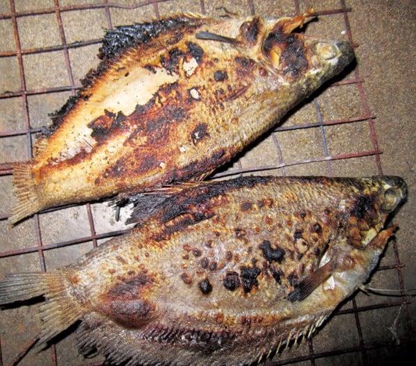 khoca_com_vn_premium_dried_fish_beef_shrimp_mota_kho ca sac mot nang 05
