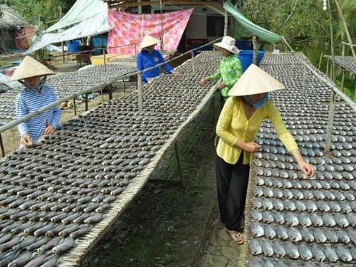khoca_com_vn_premium_dried_fish_beef_shrimp_mota_kho ca sac mot nang 03