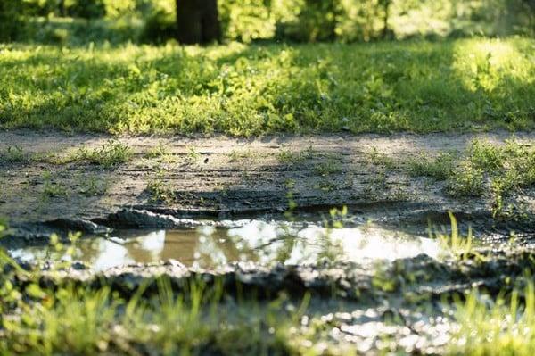 雨降って地固まる