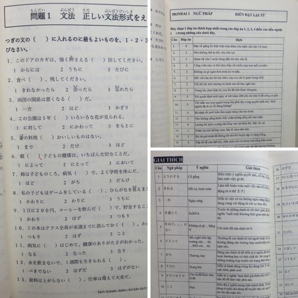 Goukaku Dekiru N3 pdf