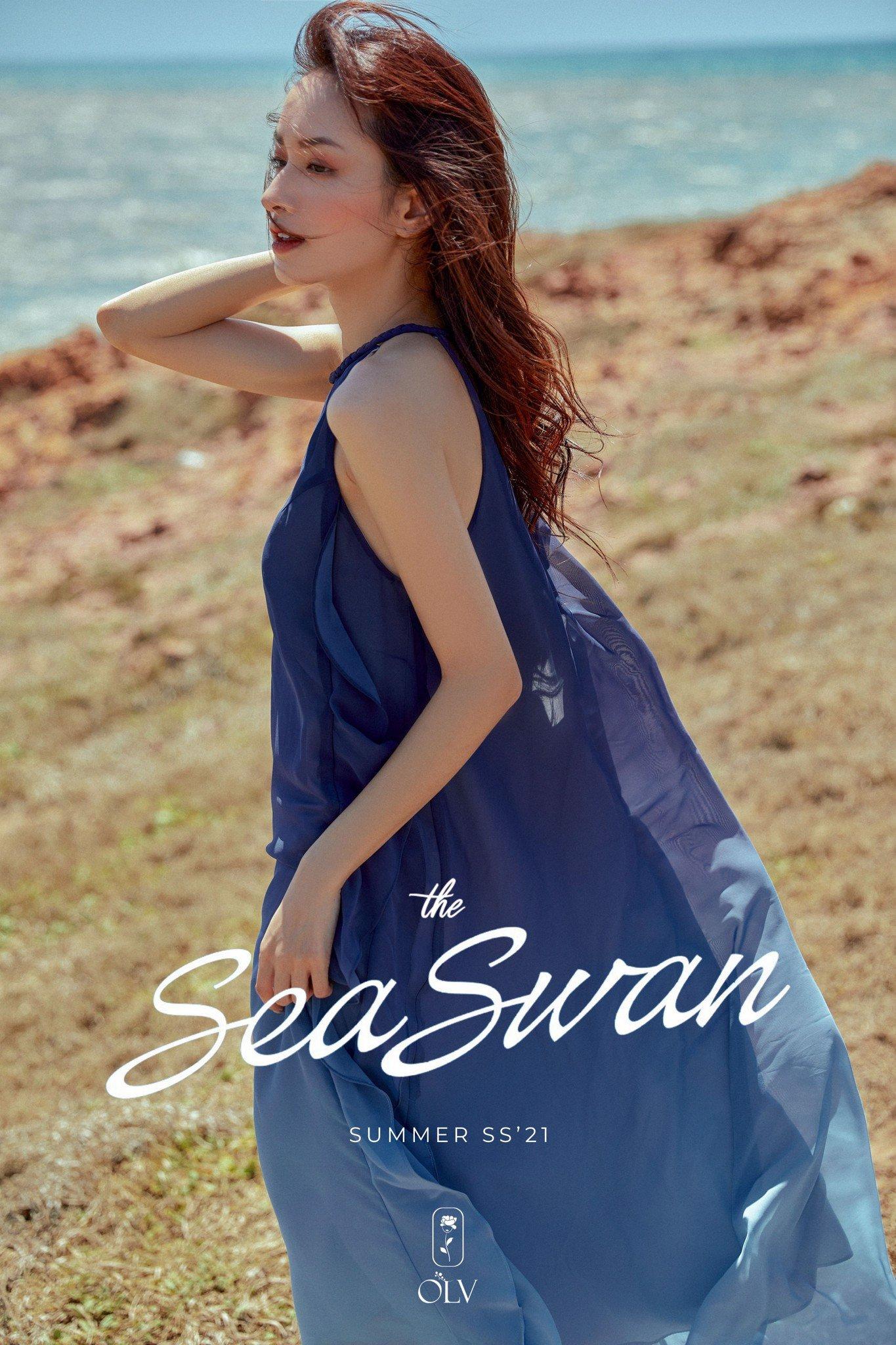 olv the sea swan