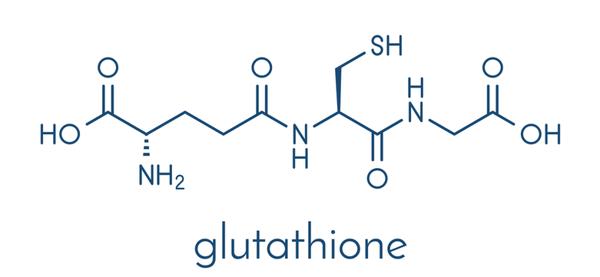 Tại sao cần bổ sung đồng thời Glutathione và Alpha Lipoic Acid