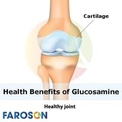 What You Need to Know about Glucosamine - Faroson Joints Care 9 in 1