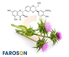 Silymarin in the prevention and treatment of liver diseases and primary liver cancer - Faroson Liver 9