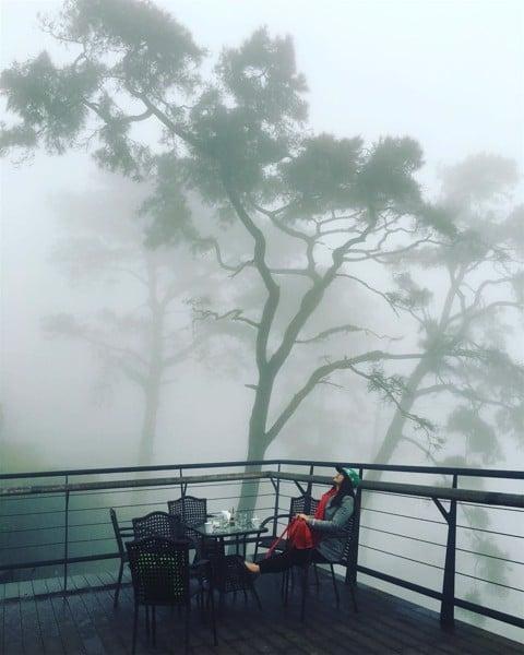 cà phê quán gió tam đảo