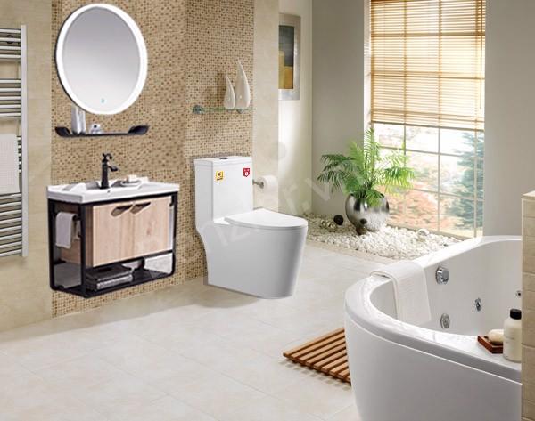 thiết bị vệ sinh cao cấp cho nội thất nhà tắm