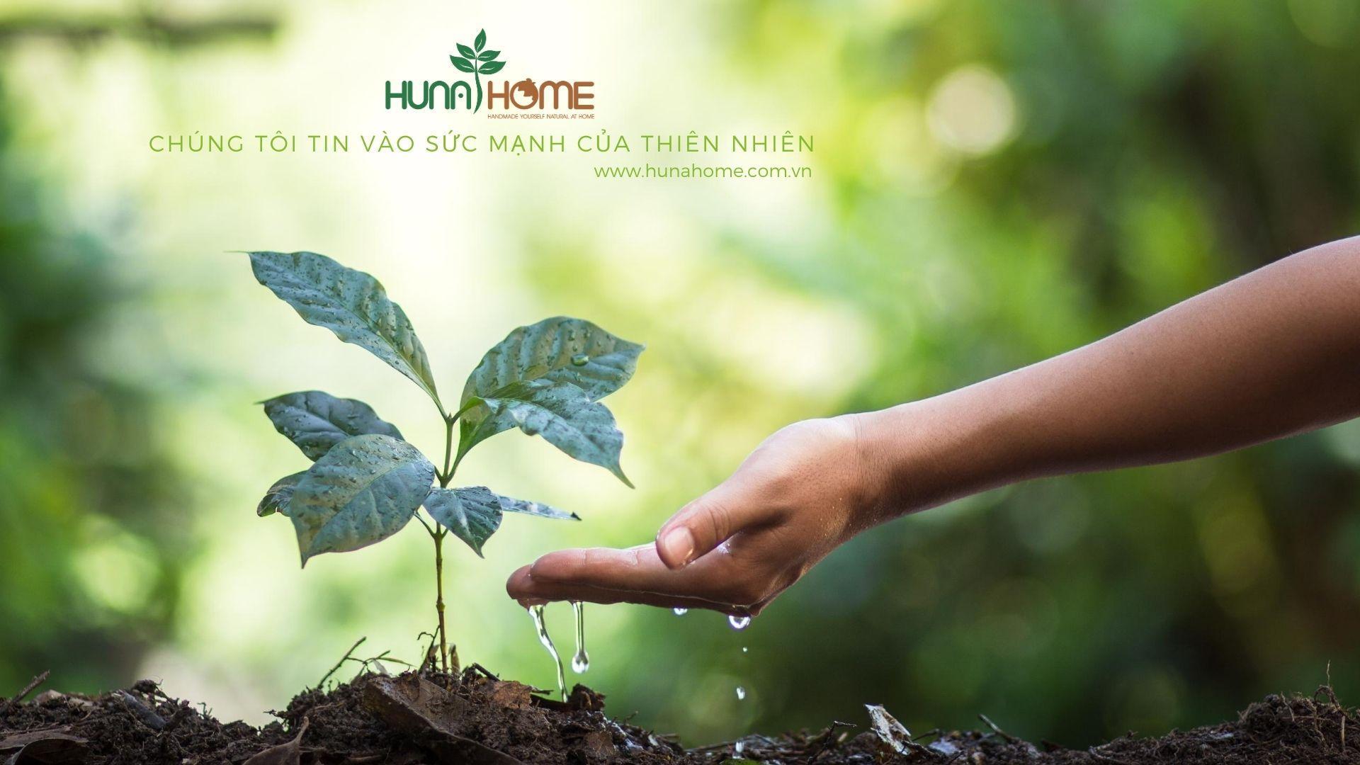 Hunahome - Chúng tôi tin vào sức mạnh thiên nhiên