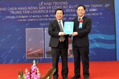 VOSA Quang Ninh received the decision to establish Cai Lan Logistics Center